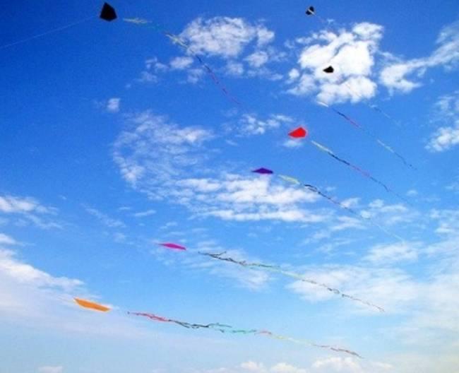 Kites1
